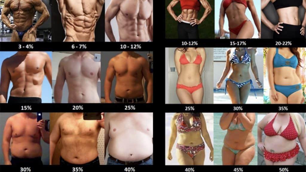 Percentuale di grasso